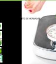 impresionarte-xativa-nutricion-herbalife-prueba-3-dias-pack-tarjetas-invitacion-vale-promocion-regalo-tomar-batido