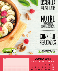 Impresionarte-Xativa-Herbalife-Nutricion-Agenda-Calendario-Distribuidores-Hbl-planificador-Mensual-Pared-Grande-Programa-Activacion-Miembro-Motivacion-Oficina-Batido-frases-Trabajo-Meses-Dias